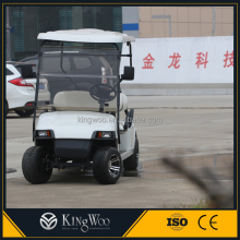 Electric 4 person enclosed golf cart