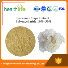 Sparassis Crispa Extract Polysaccharide 10%~50%