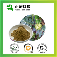 Pure herbs extract powder 40% saponins of Tribulus Terrestris Extract