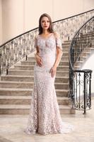 Elegant Lace Appliqued Long Sleeve Top A Line Tulle Blue Long Evening Dress
