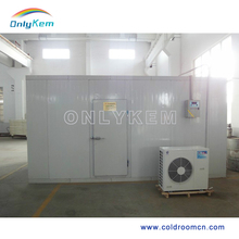 Customized Walk In Cold Storage Room With Condensing unit