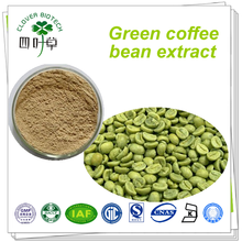 Bulk Green Coffee Bean Extract Powder Weight Loss