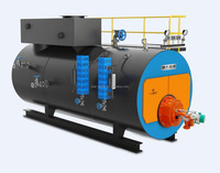 Horizontal condensing steam boiler