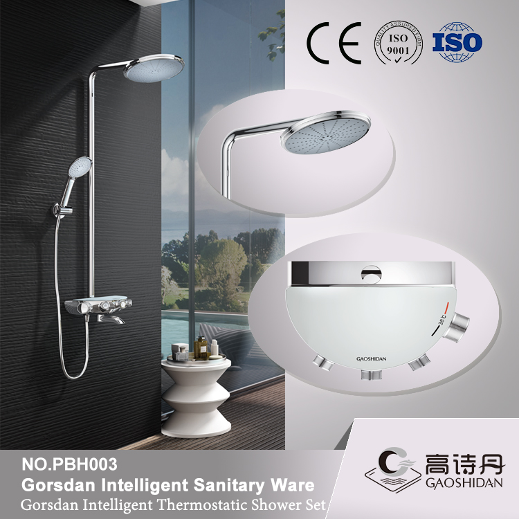 Round exposed thermostatic shower valve including handset + hose