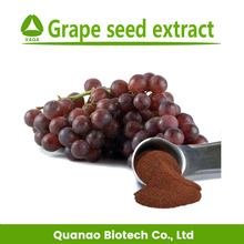 Wholesale grape seed powder Polyphenols /Proanthocyanidins in Grape seed free sample