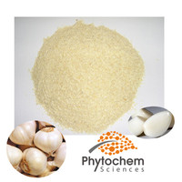 dehydrated bulk allicin extract supplement wholesale inporter buyers price organic garlic powder