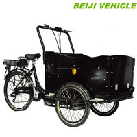 Beiji brand family cycle cargo e-bike for kids/children