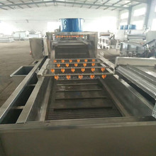 industrial washer for beet root /root vegetable brush washing machine