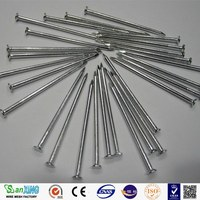 Common Wire Nail Construction Roofing Nail Iron Nail Building material