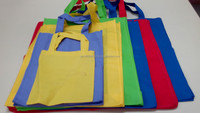 Non Woven Eco Bags for Shopping, Giveaway, Promotion and Marketing