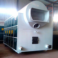 multi fuel steam heater