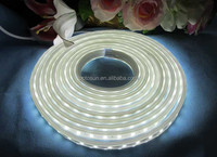 Continuous Length Flexible LED Light Strip High brightness Dimmable Rope Light 220v