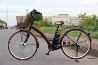 new style 250w battery powered electric city bicycle in china
