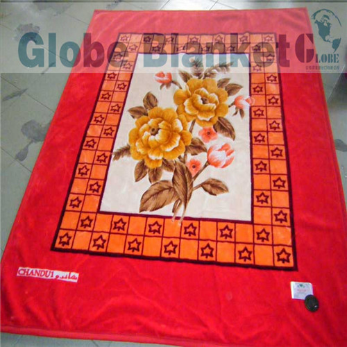 160*220cm home polyester bright future blanket for single