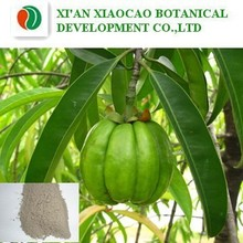high quality&natural 50%,60% 98% hydroxycitric acid hca,garcinia cambogia extract power,garcinia combogia p.e. with best price
