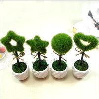 Personalized home living room simulation plants potted