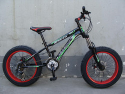 2015 20 inch 4.0 Fat bike road bike beach cruiser Fat tire bike(FT-20002)
