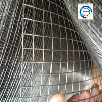 Electro/hot dipped galvanized welded wire mesh in rolls