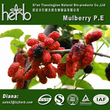 Natural colour from mulberry leaf extract with low price