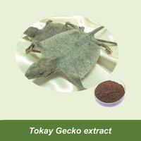 Manufactory Supply Tokay Gecko Extract For Male Sex Enhancement