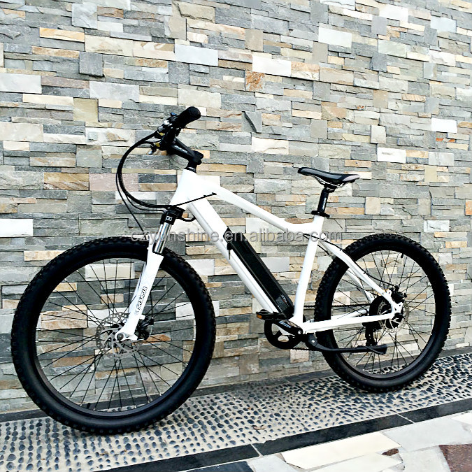 Changzhou Yunshine Multifunctional 2015 men's first choice city electric bike in chinese factory for sports