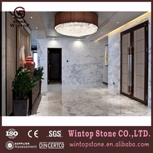 wintop factory Italian Marble Stone Flooring Tile Hot Sale in USA