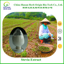 China Stevia, Stevioside Manufacture, Pure Organic Stevia Extract with Rebaudioside A 99%
