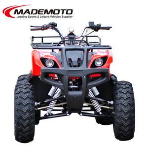 800W 60V Adult Electric ATV with Differential Mechanism ( EA0806)