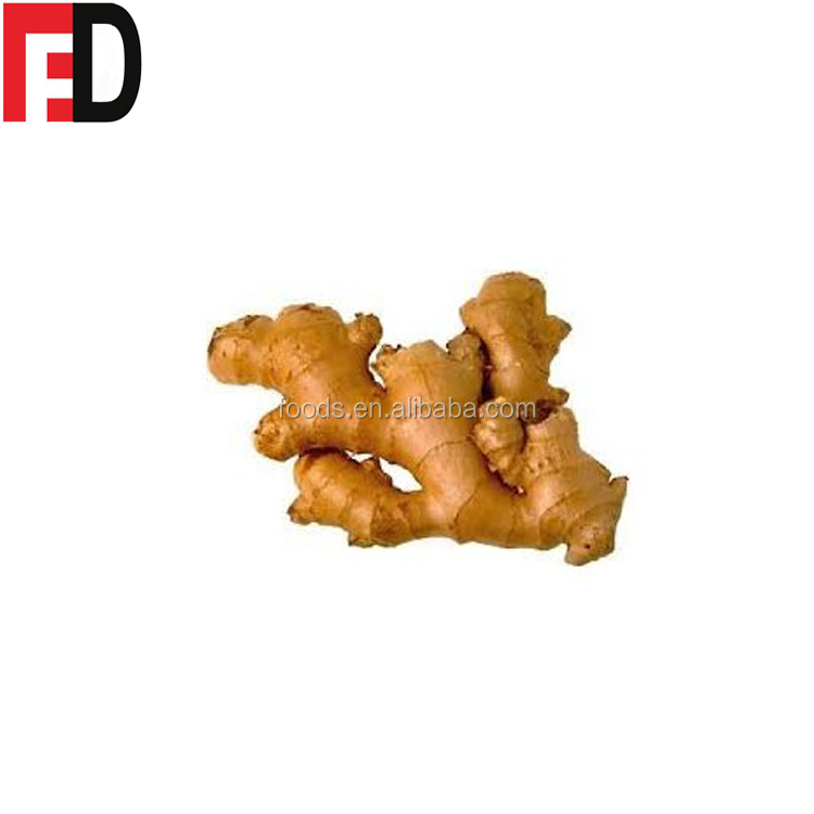 Shine Yellow Colour Fresh Ginger (100g-150g) and 200g up into ginger sticks