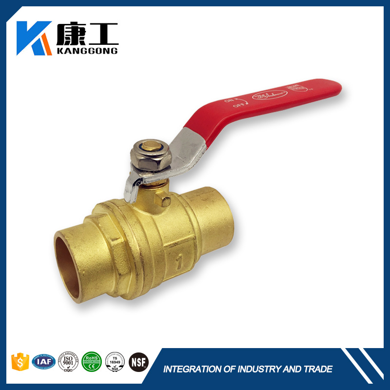 China Online 1 Brass In Line Spring Check Valve 200Wog