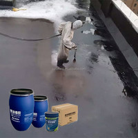Sprays Instant Liquid Rubber Bitumen Waterproof Membrane Type Mastic Joint