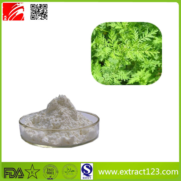 Factory supply artemisia annua extract artemisinin