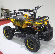 1000W chinese electric QUADS for sale