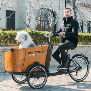 Beiji cargo bike for adult quality guaranteed electric tricycle