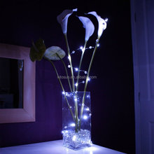 Christmas Outdoor High Quality Products Battery Operated Invisible Italian LED String Lights
