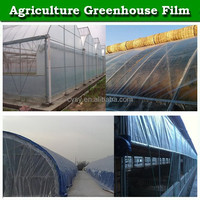 Anti UV 200 micron plastic film/green house covering material