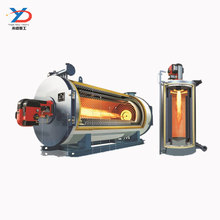 3 Ton Thermax Boiler Price Oil gas fired Boiler