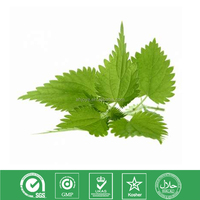 100% Natural Nettle Root(Leaf) Extract powder Active ingredient: Silica acid