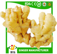 2014 new crop fresh ginger 10kg/ctn Linyi origin