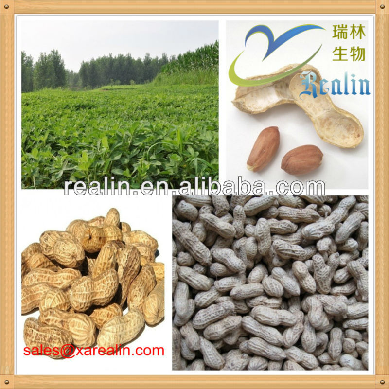 Peanut Husk Extract/Groundnut Shell Extract Luteolin