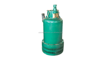 Submersible pump 2 inch/BQS deep well electric submersible water pump