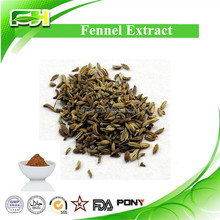 Natural Medicinal Herbs Fennel Seed Extract
