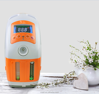 9L home use low price mini battery portable medical electric oxygen