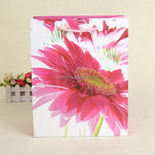 shopping/gift cheap craft paper gift bags