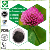 best price plant extract Red Clover P.E. powder Isoflavones 40%