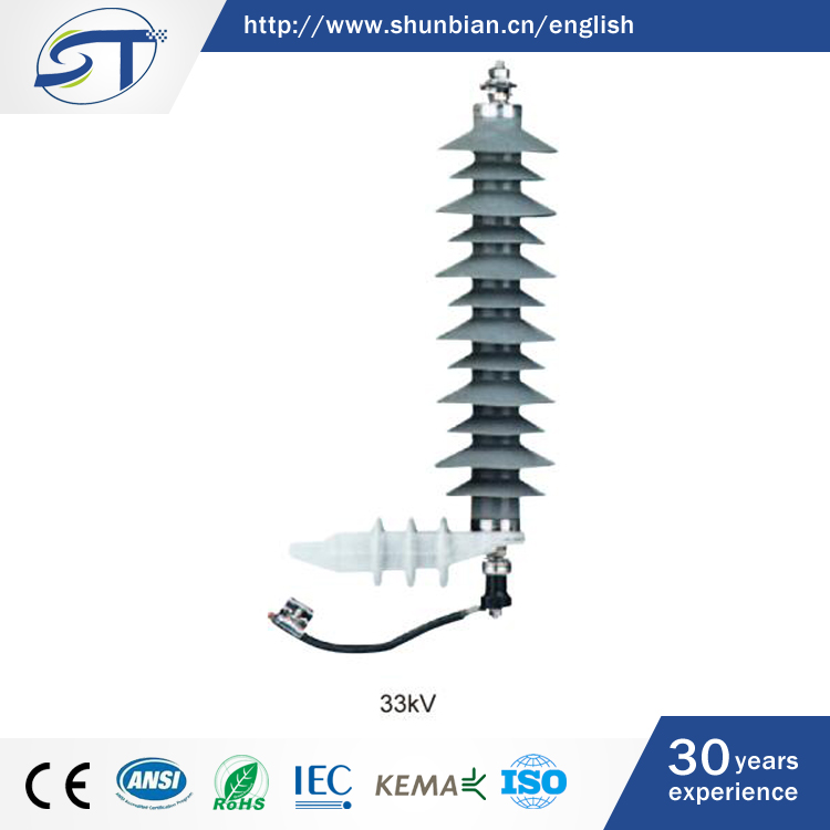 SHUNTE Design Your Request Hot Sell In Sudan 33KV Protection Building Lightning Arrester