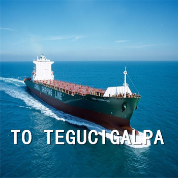 Sea Freight shipping forwarder to USHUAIA from China Shanghai Ningbo Shenzhen Guangzhou Qingdao Tianjin Xiamen