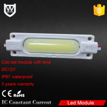 Single Color Led Injection Module dc led module CE RoHS Approval