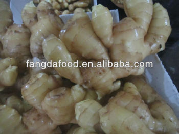 new crop of clean surface ginger