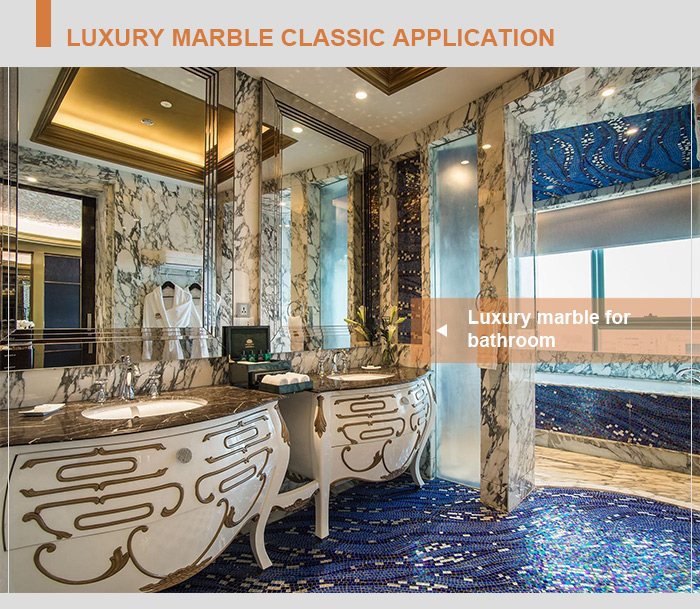 Washington watergate hotel bathroom design 12x24 inch marmara equator 10mm thin marble